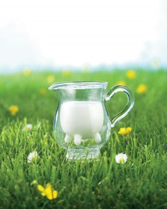 PITCHER-Auvergne-MILK-UHT-MOUNTAIN-DAIRY-SLVA